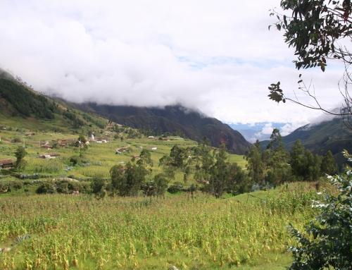 Andes Sur